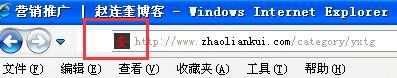 赵连奎博客网站favicon图标
