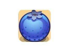 蓝莓资讯app怎么样?真的能赚到钱吗?